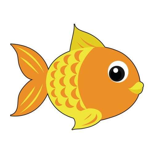 Pack de manutenção mensal para peixes de água fria